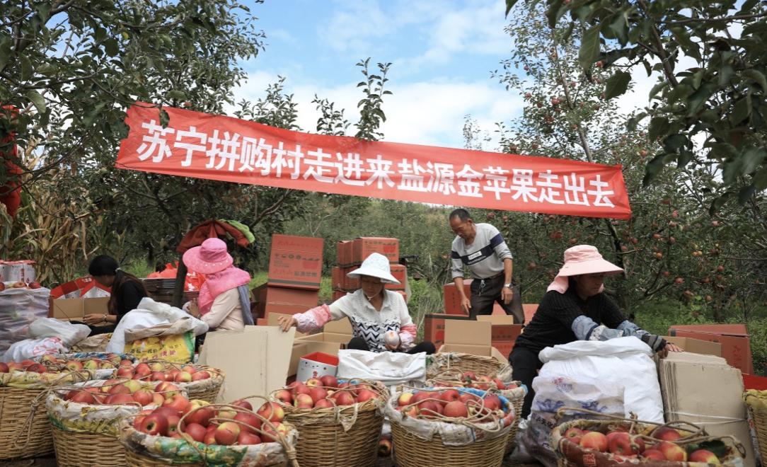 苏宁发布战汛六条,以旧换新补贴超1亿 智能公会